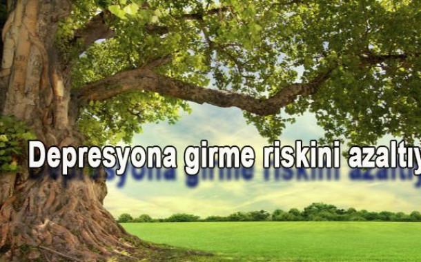 Bahçenizdeki ağaç sizi depresyondan koruyabilir!