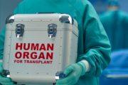 Prof. Dr. Ahmet Tekin: Organ naklinde dünyada ilk üçteyiz