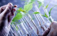Yerli Biyoteknolojik İlaç Üretilecek!