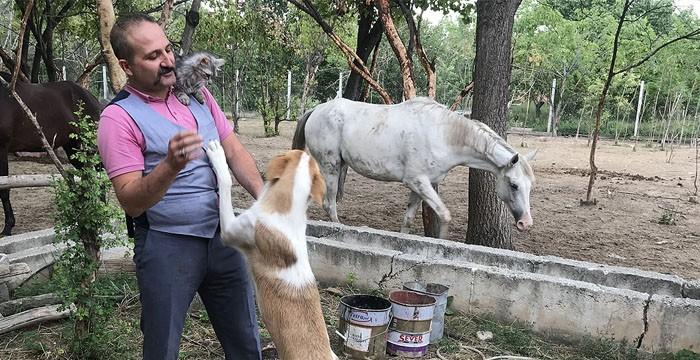 Konyalı doktor 'Hayvanlar hayatıma her zaman güzellik katıyor'