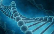 Türkiye Genom Projesi 29 Ekim'de Başlıyor