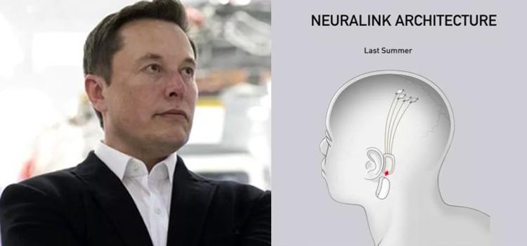 Elon Musk yepyeni projesi ile dünyanın karşısına çıktı