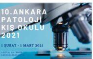 Patoloji Kış Okulu Online Yapılacak